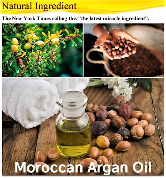 argan-plant-collage-v1.jpg